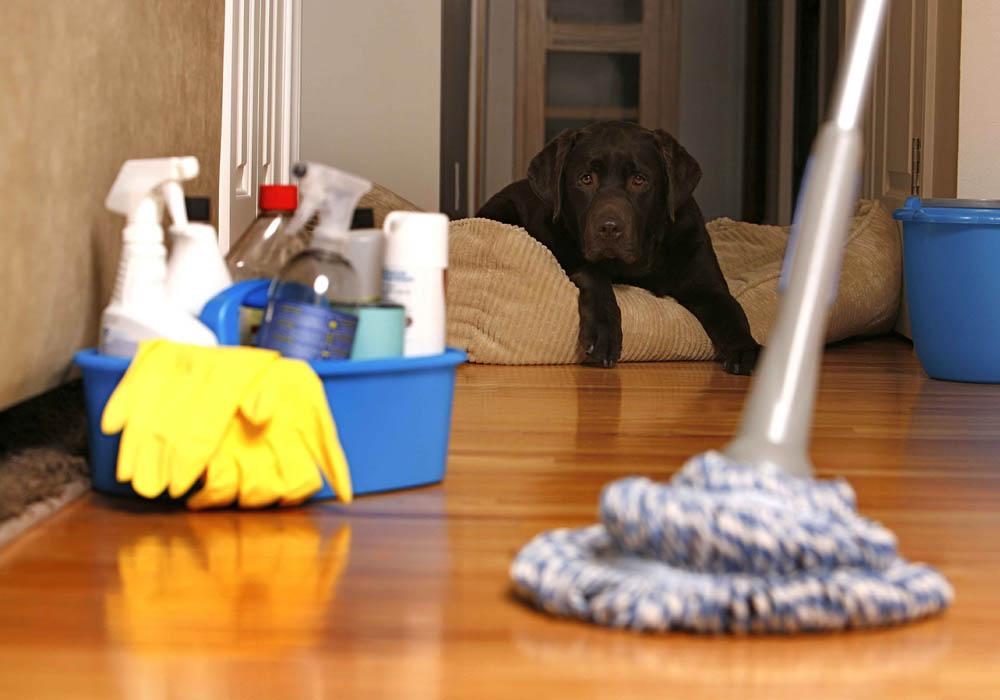 Denver Residential House Cleaning
